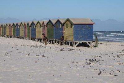 Kaapstad 4